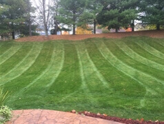 Lawn Care Louisville OH